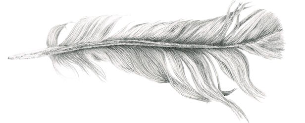 Louisa-Crispin-Feather-I.jpg